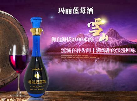 高端蓝莓酒 优选